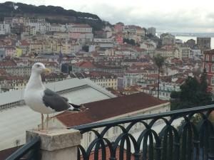 lisboa-portugal-o-que-fazer