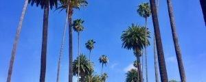 Go Los Angeles Card – como economizar nos pontos turísticos de Los Angeles