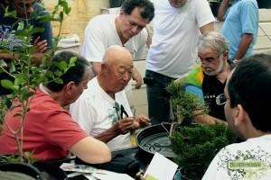 Read more about the article O Mestre Bonsaísta. Uma reflexão sobre a arte do Bonsai