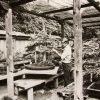 e-Book Tecnicas Del Bonsai | John Yoshio Naka