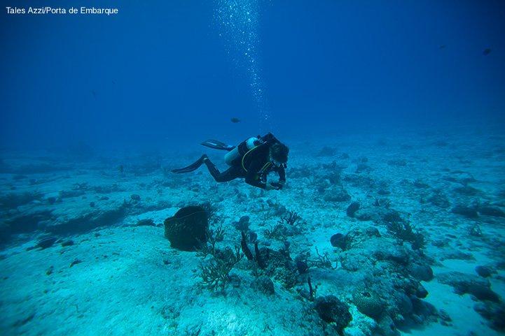 Mergulho em Cozumel, no México, uma das paradas do Norwegian Getaway