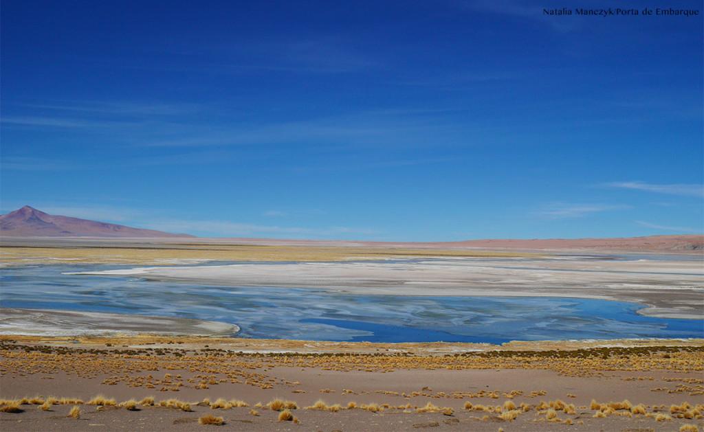 salar de tara lagoa e vulcão no deserto de Atacama, chile