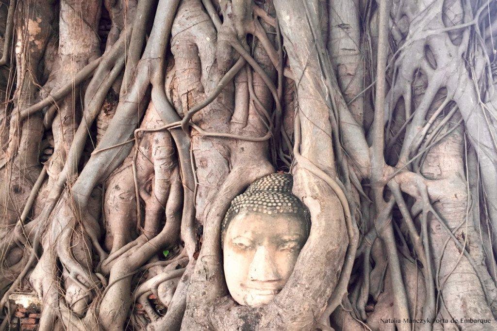 Ayutthaya-cabeça
