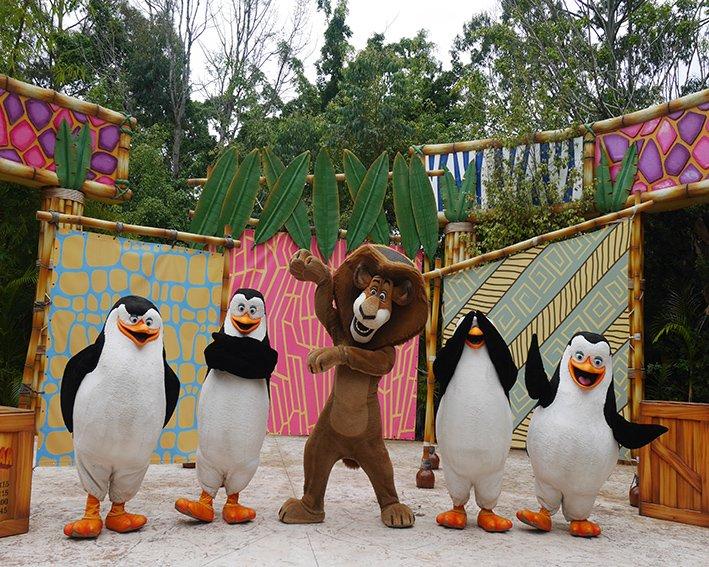 Os bichinhos do Madagascar também encontram as crianças