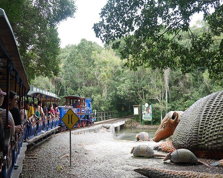 Trenzinho que passa pelos animais do parque