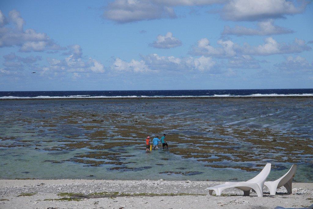 Praia de Lady Elliot Island, na Australia