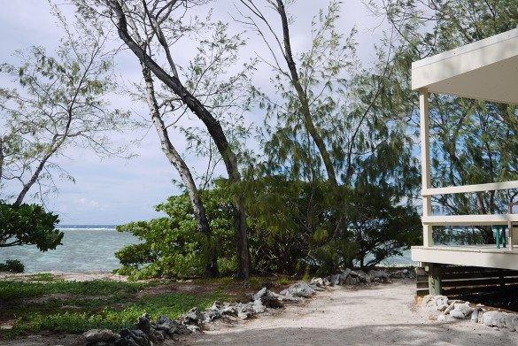 Lady Elliot 038 585x391 - Lady Elliot: uma das ilhas mais bonitas da Austrália