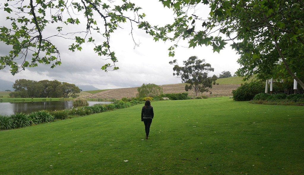 Vinicola Jordan Stellenbosch10