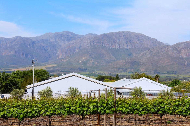 Vinicola em Stellenbosch, perto de Cape Town