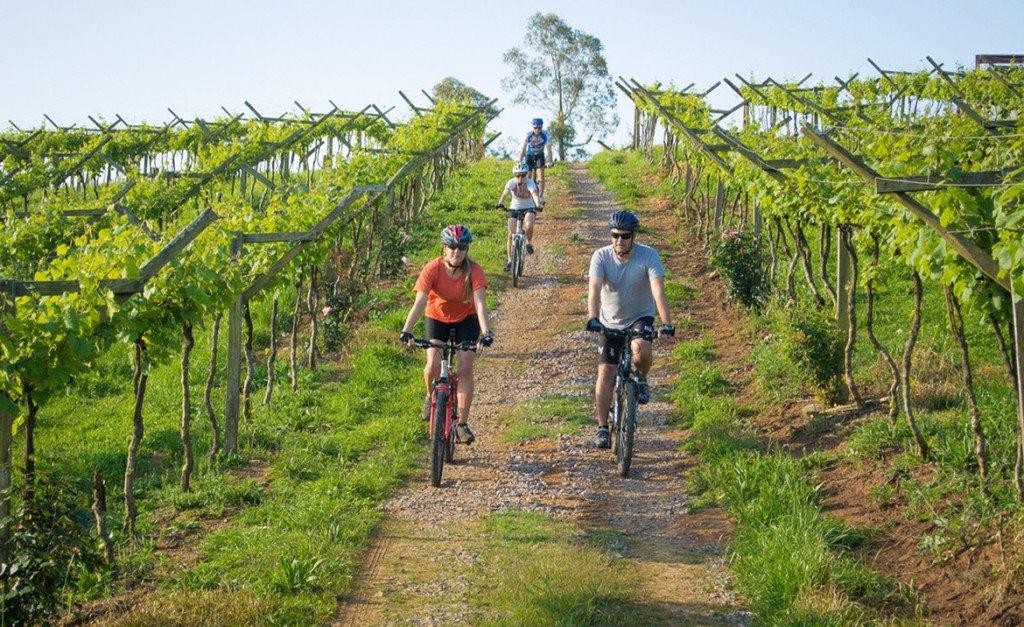 Bicicleta nas vinícolas da Serra Gaúcha, Dall Onder