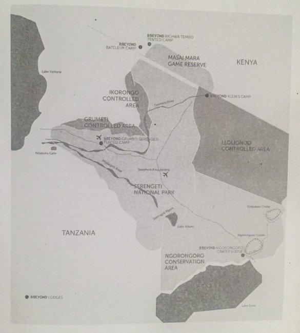 Tanzania Serengueti quando ir2 1 e1489848006572 585x649 - Tanzânia: Quando ir?