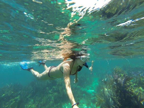 Belize_snorkel-caye Caulker