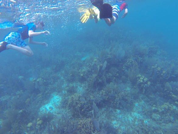 Belize48 585x439 - Conheça Belize: o Caribe só para você!