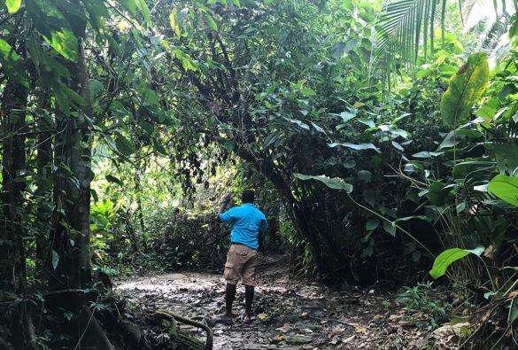 IMG 3877 1 1 e1510778831228 585x395 - Praias de Belize