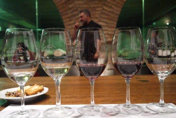 P1120637 585x391 - Melhores vinícolas de Mendoza