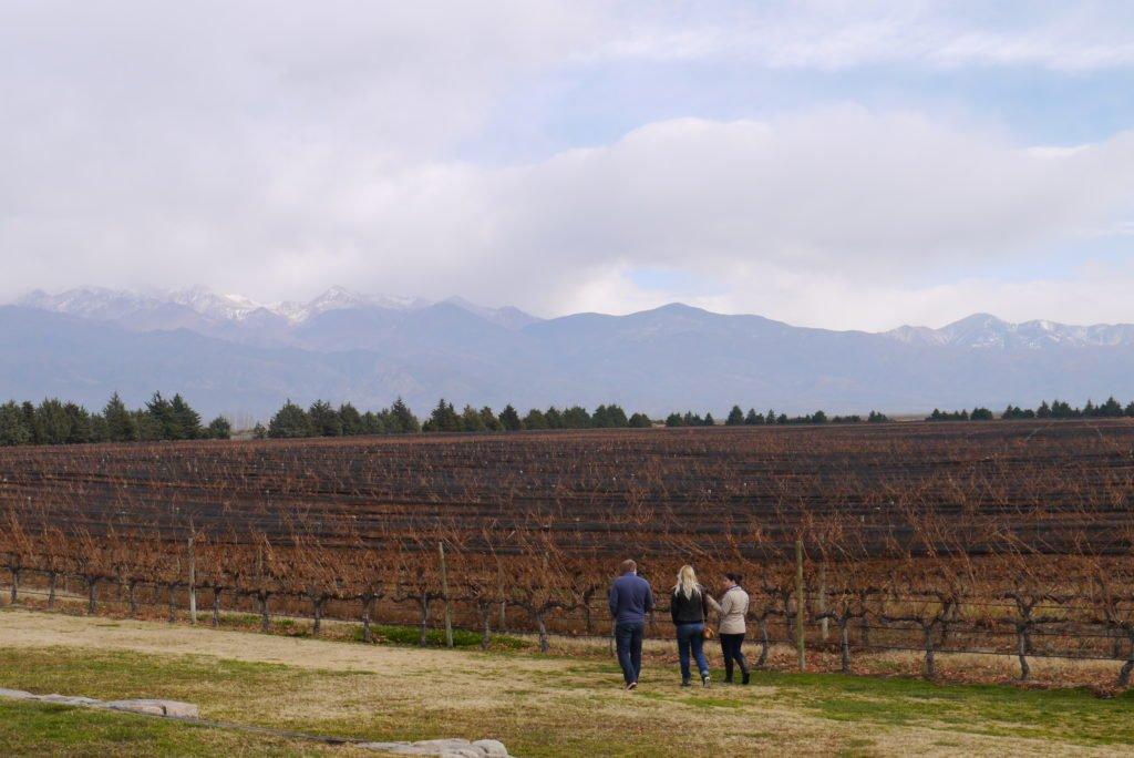 Melhoroes vinicolas de Mendoza
