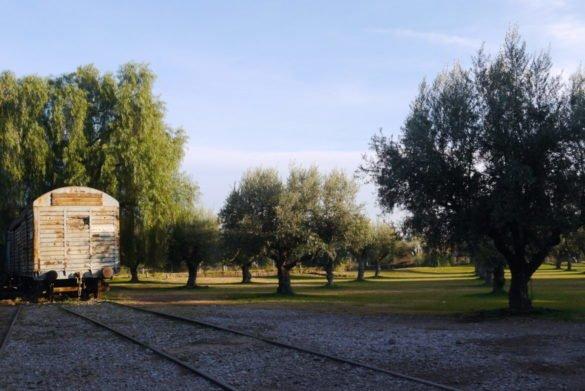 P1120857 e1513567030270 585x391 - Melhores vinícolas de Mendoza