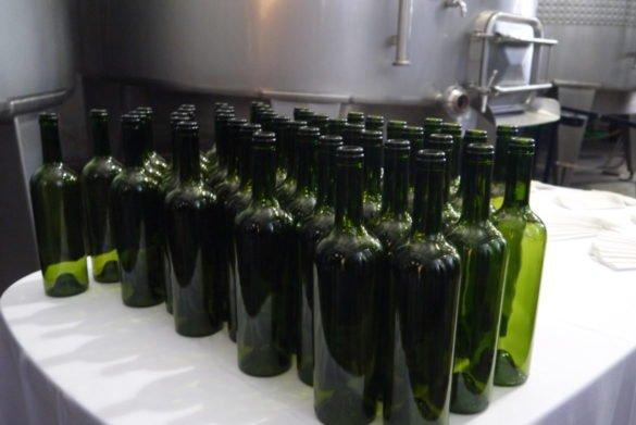 P1130034 e1513830534250 585x391 - Melhores vinícolas de Mendoza