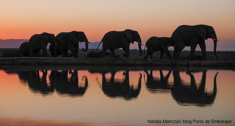 Roteiro África do Sul para você saber quais locais visitar