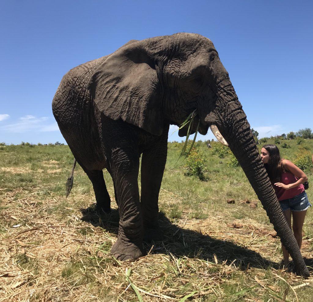 IMG 4166 1024x986 - Roteiro de 15 dias na África do Sul