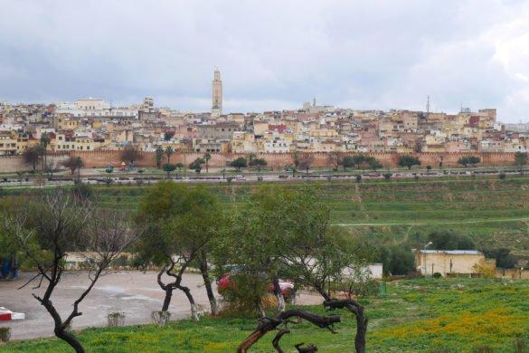 Meknes oque fazer em meknes6 585x390 - Dicas do Marrocos: o que fazer em Meknès e Volubillis