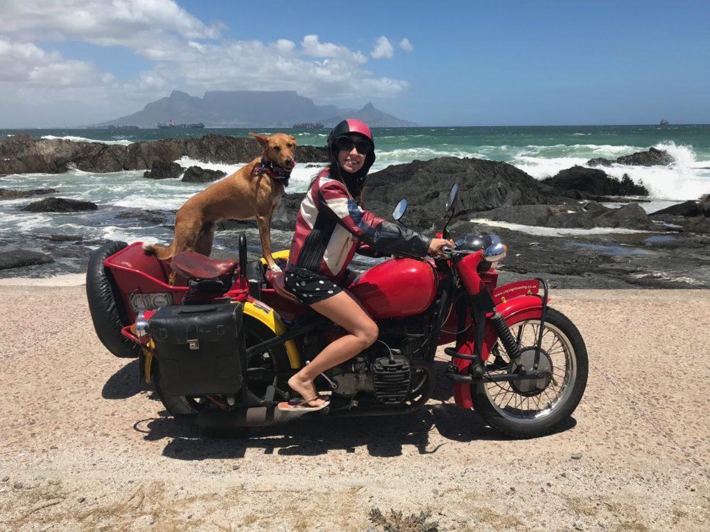 IMG 5472 1024x768 - Roteiro de quatro dias em Cape Town