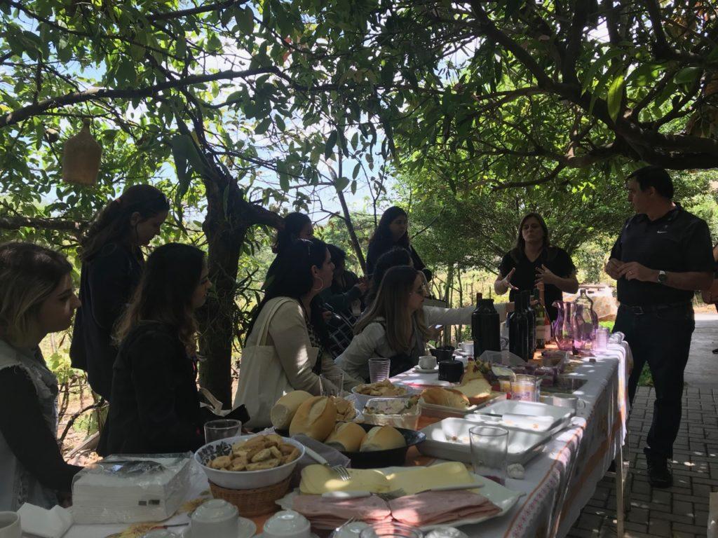 Rota da uva de Jundiaí 1 1 1024x768 - Rota da uva de Jundiaí: para provar muito vinho perto de São Paulo