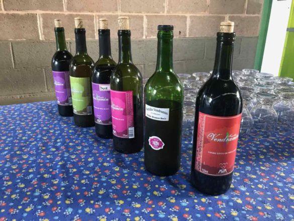 Rota da uva de Jundiaí 3 2 585x439 - Rota da uva de Jundiaí: para provar muito vinho perto de São Paulo