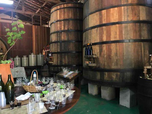 Rota da uva de Jundiaí Adega do Portugues 6 585x439 - Rota da uva de Jundiaí: para provar muito vinho perto de São Paulo