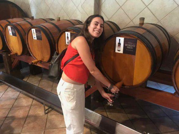 Rota da uva de Jundiaí Maziero 4 585x439 - Rota da uva de Jundiaí: para provar muito vinho perto de São Paulo
