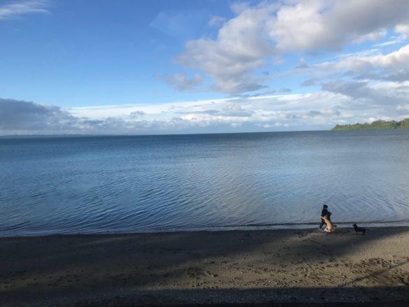 Cruce Andino 2 3 585x439 - Cruce Andino: como é a viagem de Bariloche a Puerto Varas