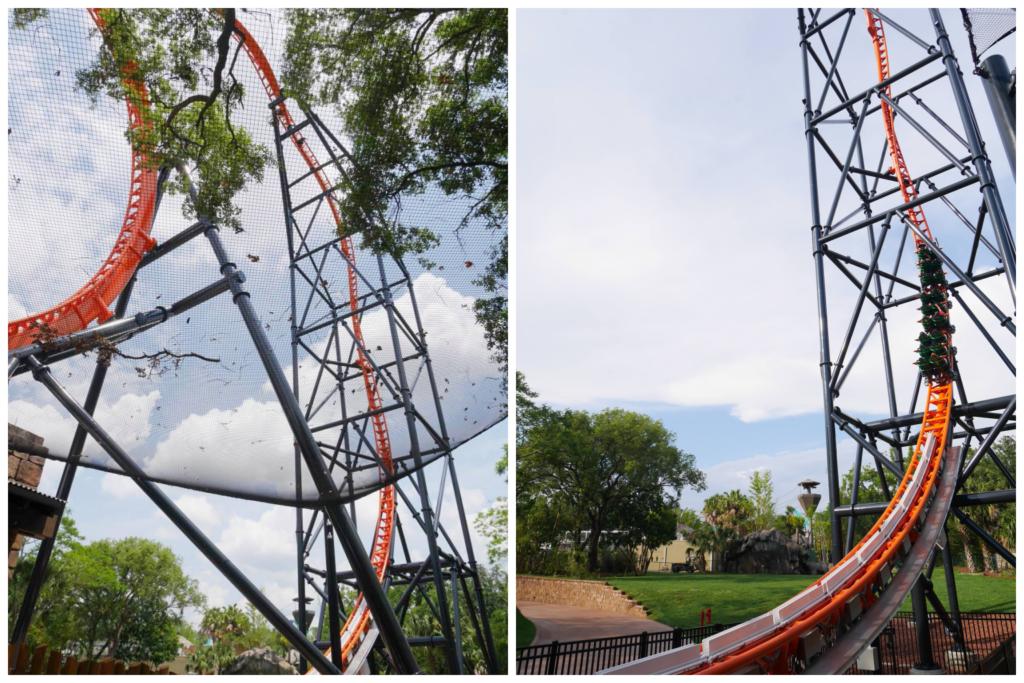 Tigris, a nova montanha russa do Busch Gardens