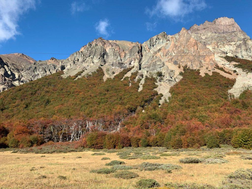 Bosque vermelho na Patagonia chilena, Aysén