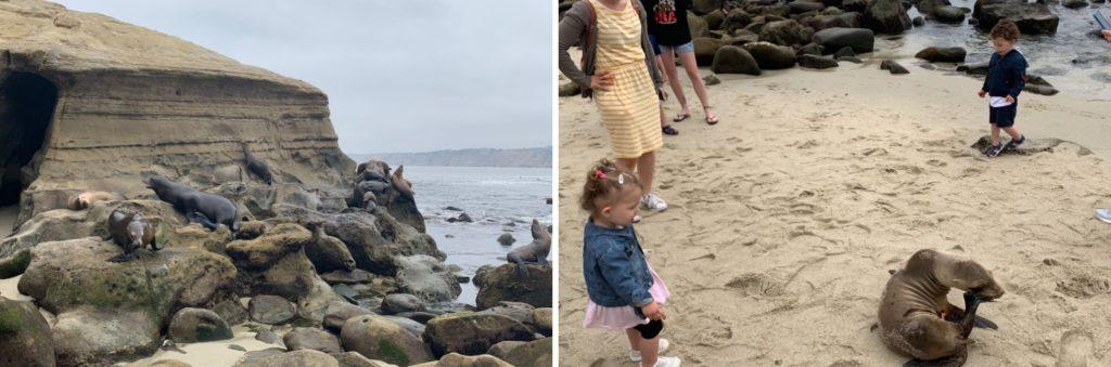 Praia de La Jolla, perto de San Diego