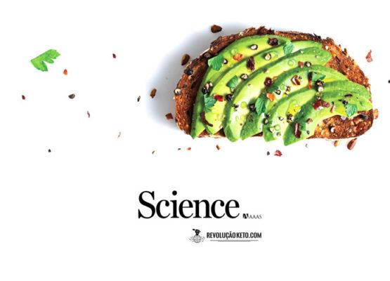 Gorduras: de inimigas a amigas? Confira o artigo recém-publicado na Science 2