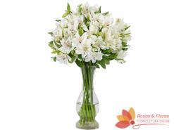 Arranjo de Astromélias Brancas Floricultura Rosas e Flores RJArranjo de Astromélias Brancas Floricultura Rosas e Flores RJ