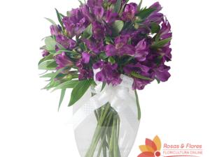 Arranjo de Astromélias Roxas Floricultura Rosas e Flores RJ
