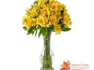 Arranjo de Astromélias Amarelas Floricultura Rosas e Flores RJ