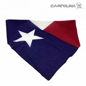 Bandana Importada Texas