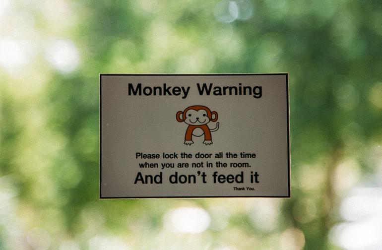 Railay Princess Resort & Spa - é preciso manter as portas e janelas fechadas para evitar a visita de macaquinhos travessos
