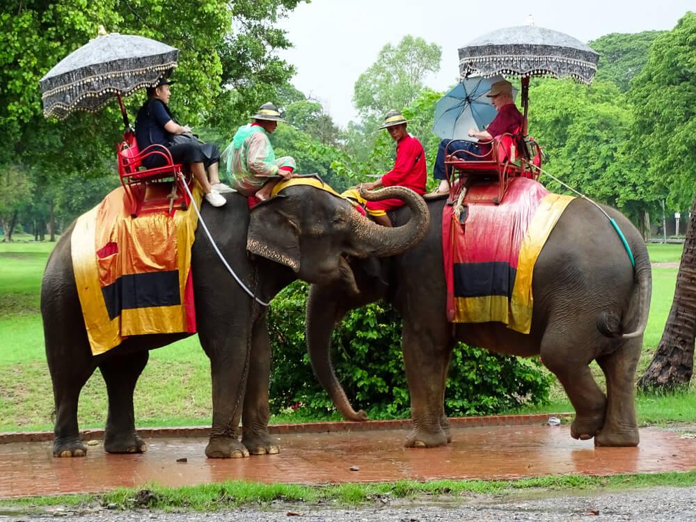 Turistas andando em Elefantes em Ayutthaya