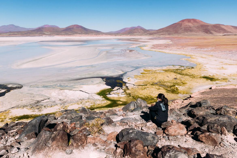 Lagunas Altiplânicas - Piedras Rojas possuem esta cor avermelhada devido a alta concentração de ferro no solo.