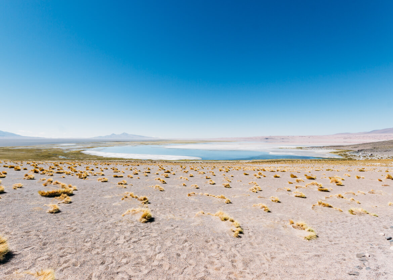 Salar de Tara - um dos passeios mais incríveis do Atacama