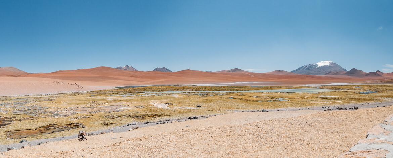 Salar de Tara - humedal de quepiaco