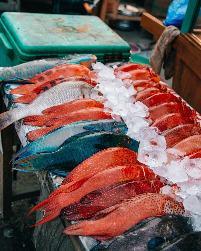 Komodo Indonésia - Labuan Bajo - Mercado de Peixes