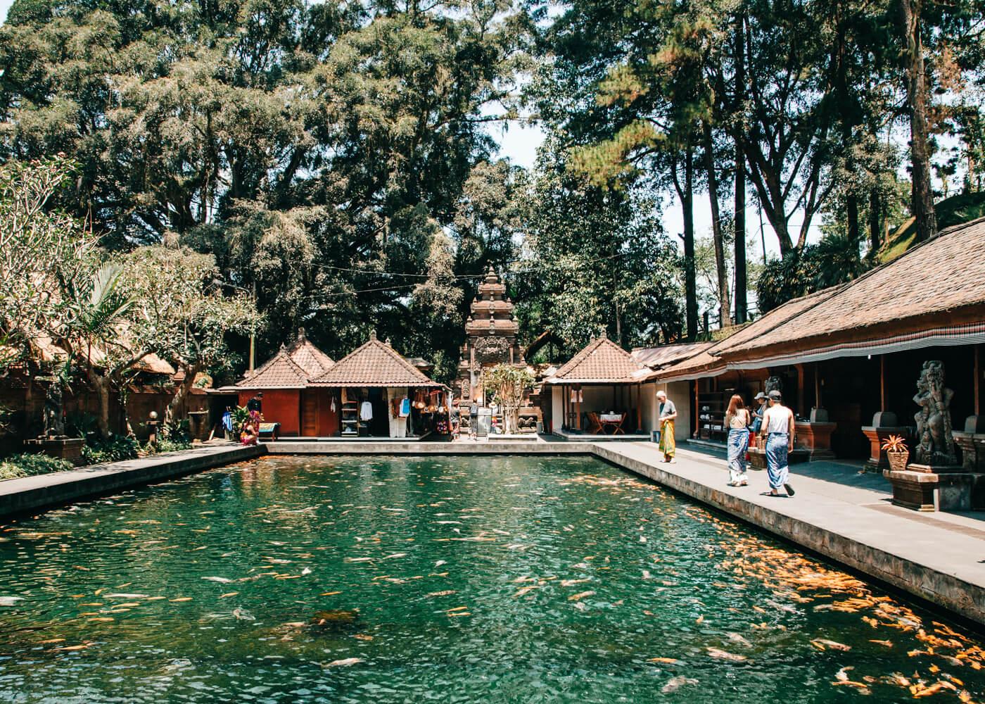 Templo Tirta Empul - Ubud - Bali - Indonésia | Piscina com carpas