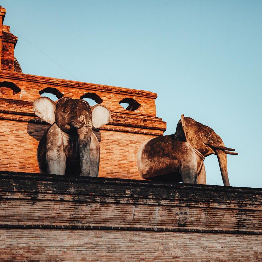 roteiro tailandia elefantes