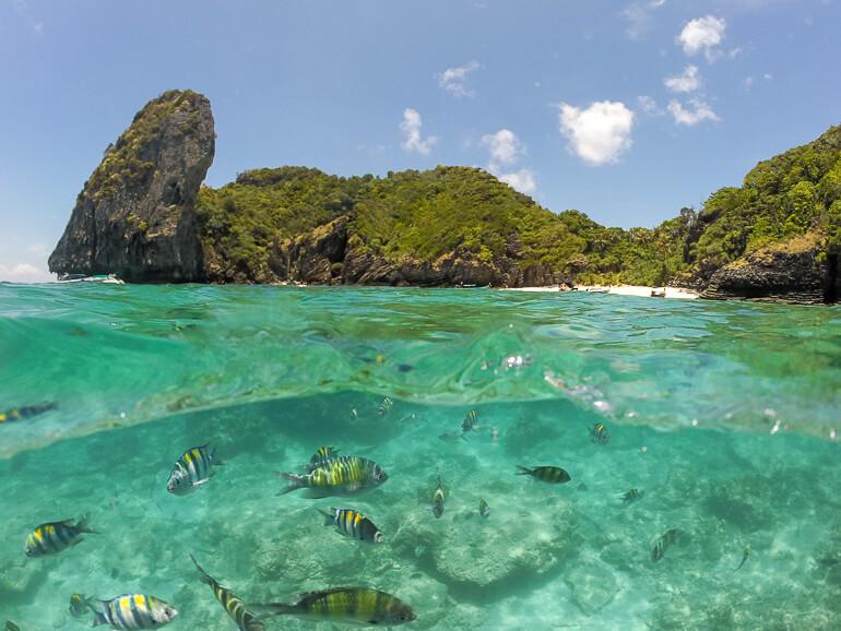Nui Bay - Phi Phi Island