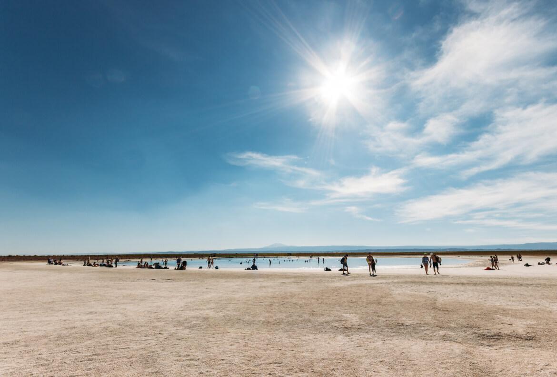 Laguna Cejar, Atacama