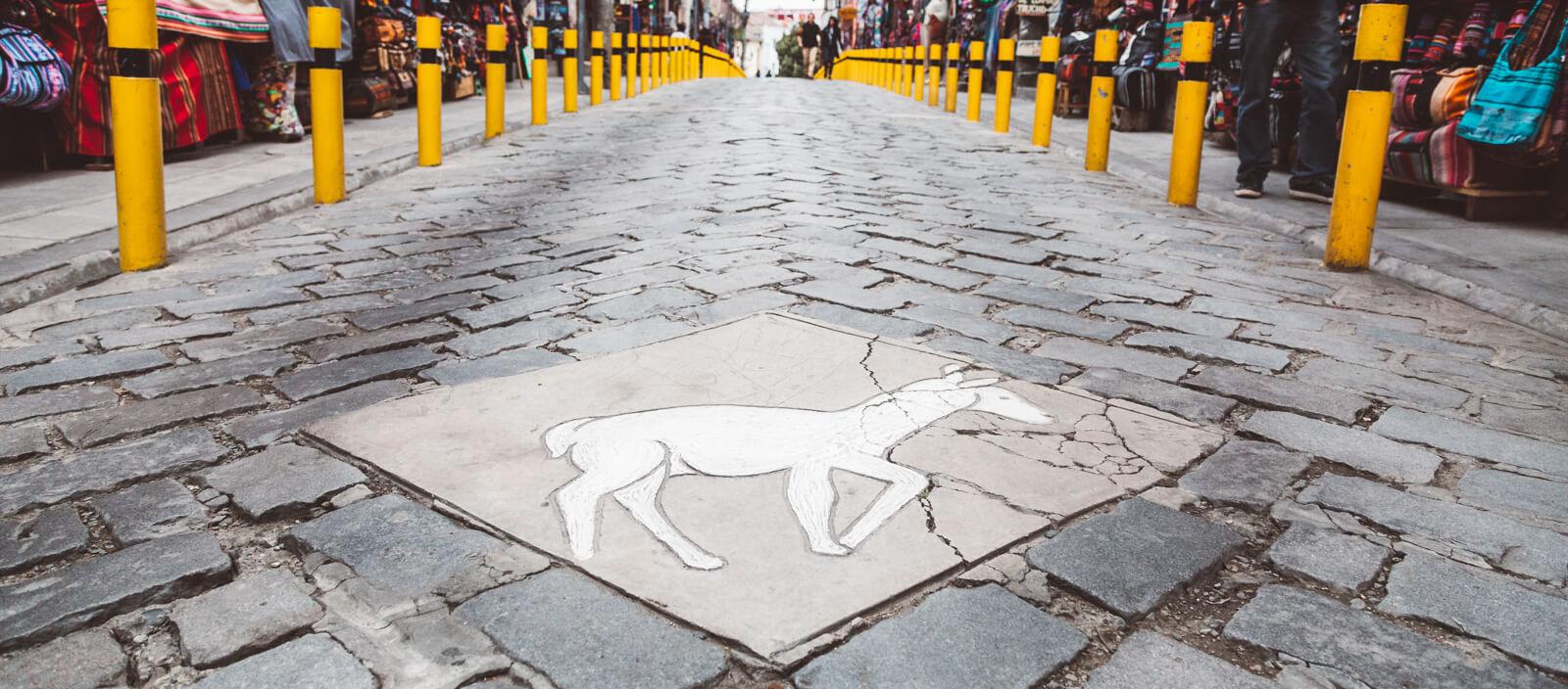 Bruxaria e feitiçaria: Conheça o Mercado das Bruxas de La Paz